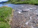 река Ачипста