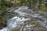 река Чистая