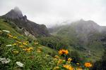 долина реки Челипсы