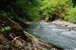 устье реки Ушхо