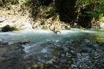 купание в реке Ушхо