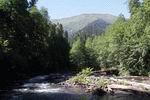 река Холодная