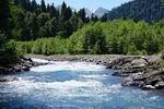 река Киша